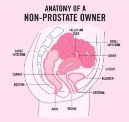 Non-Prostate